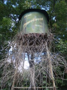 Pennellwood Water Tower, Overgrown
