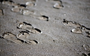 Footprints In The Mud by Stuart Herbert