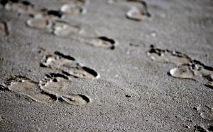 Footprints In The Mud by Stuart Herbert