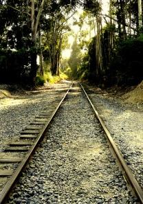 Track by *~Dawn~*