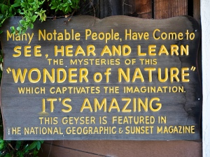 Visitor Sign by Chris Pederick